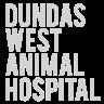 dundas west vet